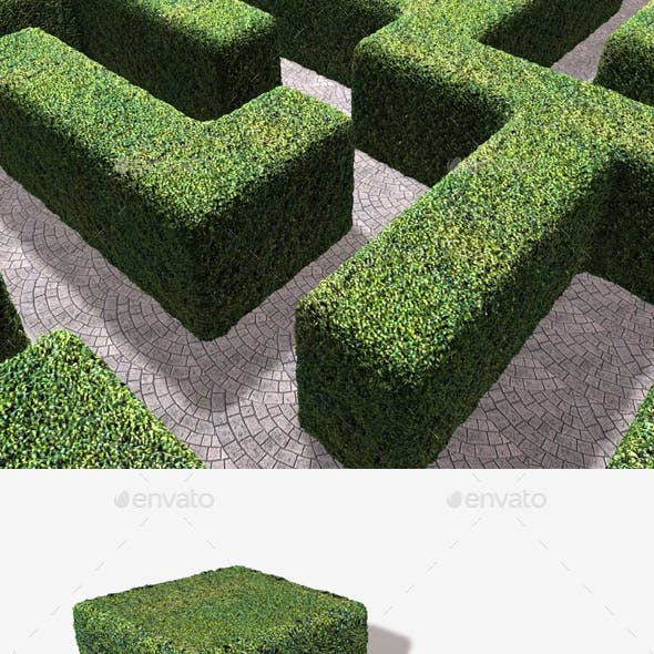 Fake Astro Hedge Seamless Texture