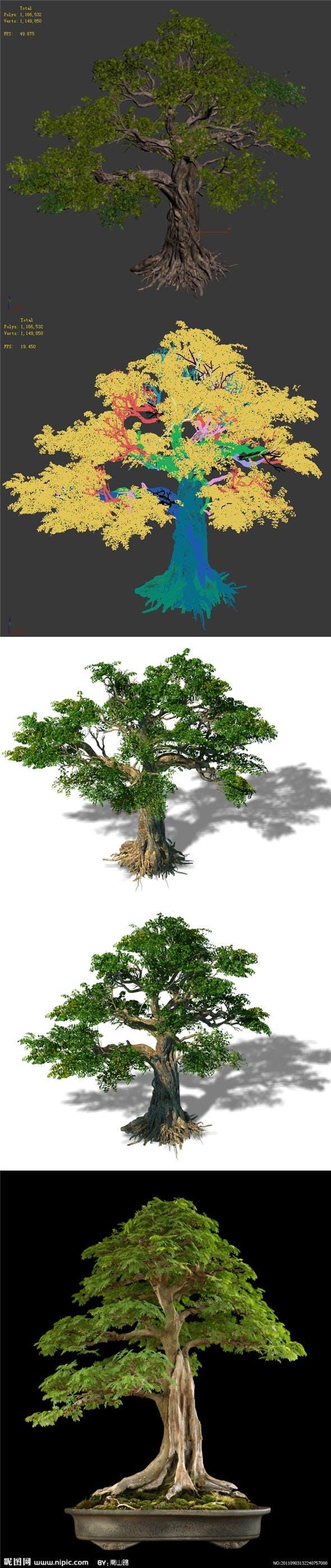 Trees - Huanglongshan trees - 3DOcean Item for Sale