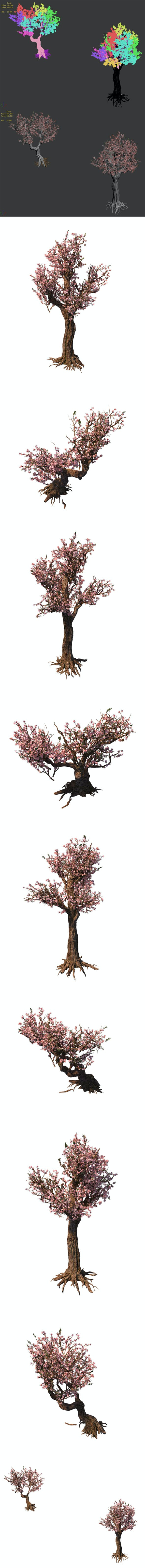 Tree - wonderful fantasy - peach tree 01 - 3DOcean Item for Sale