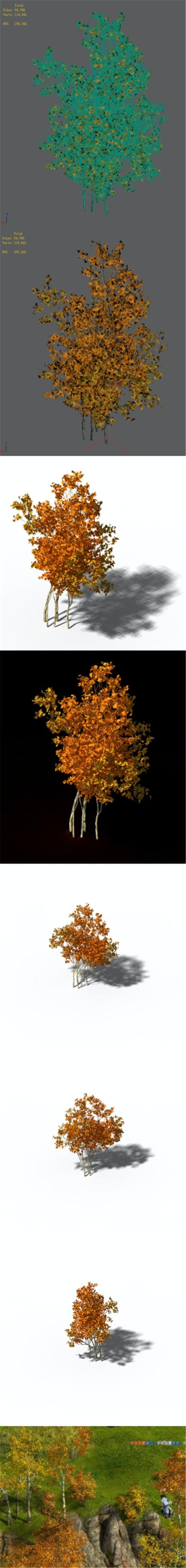 Shrub - Huanglongshan Small Trees 03 - 3DOcean Item for Sale
