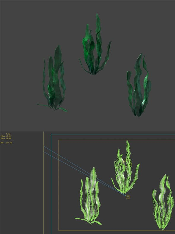 Game model - seabed - kelp - 3DOcean Item for Sale