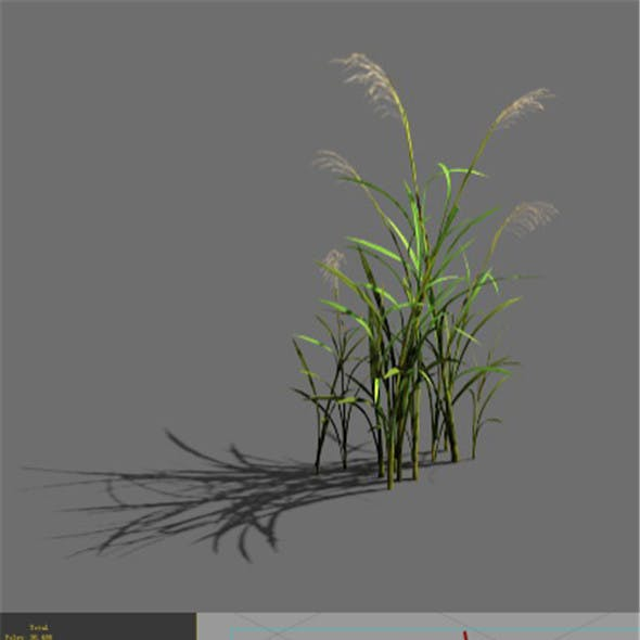 Game Model - Forest - Grass