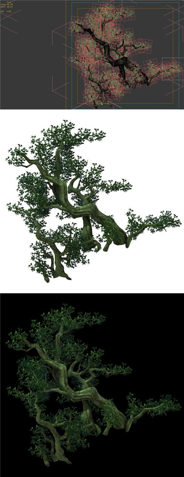 Game Model - Forest - Tree 04 - 3DOcean Item for Sale
