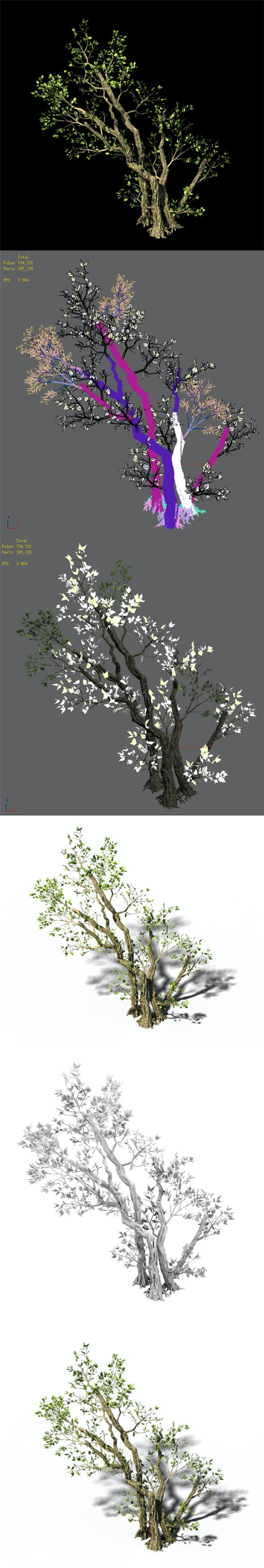 General Plant - Trees 01 - 3DOcean Item for Sale