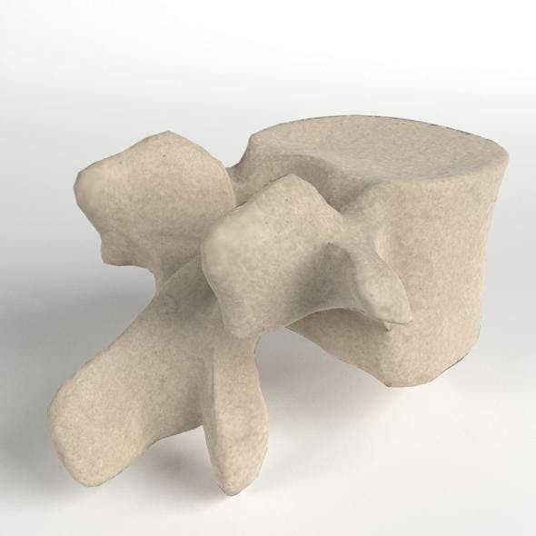 Lumbar Vertebra - 3DOcean Item for Sale