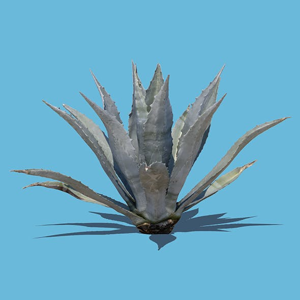 Robert Plant (3D scan) - 3DOcean Item for Sale