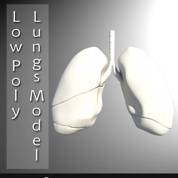 Low Poly Lungs Model