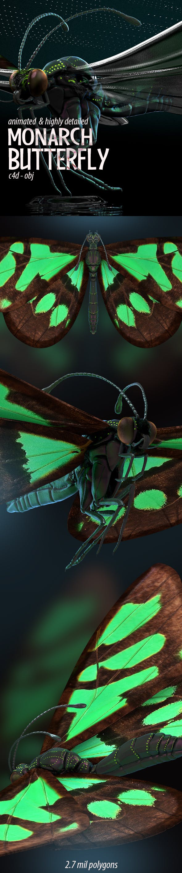 Butterfly Flapping Wings 3D Model - 3DOcean Item for Sale