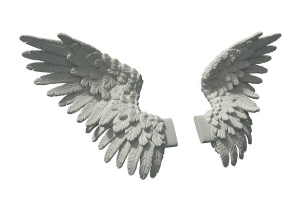 Wings - 3DOcean Item for Sale