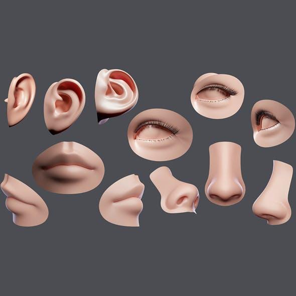 Facial Element