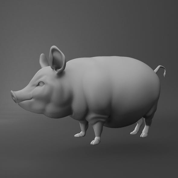 pig character design