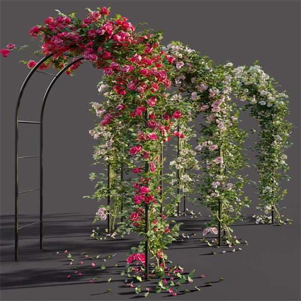 Arch pergola with roses - 3DOcean Item for Sale