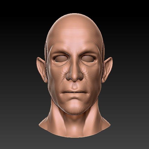 Half Elf 3D Bust