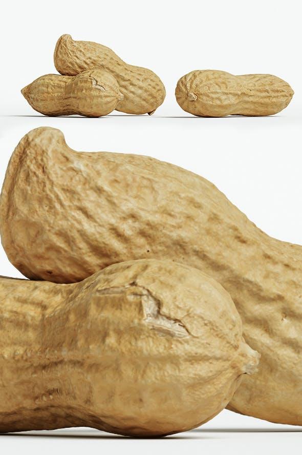Peanut 002 - 3DOcean Item for Sale