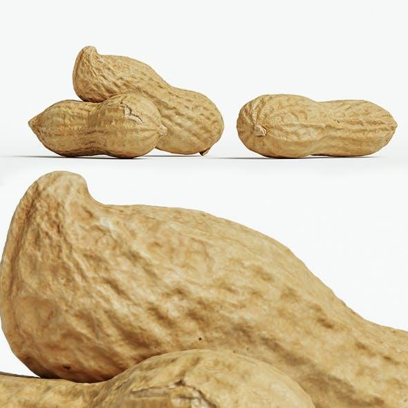 Peanut 002