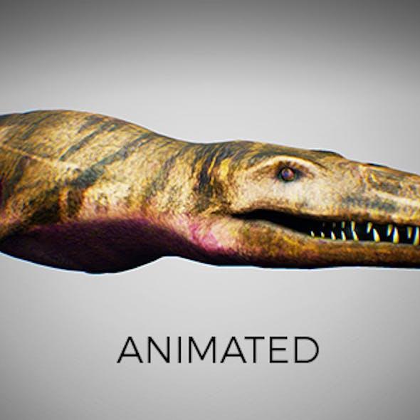 Ocean Pliosaur Mosasaurus