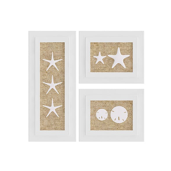 Starfish Wall Decoration - 3DOcean Item for Sale
