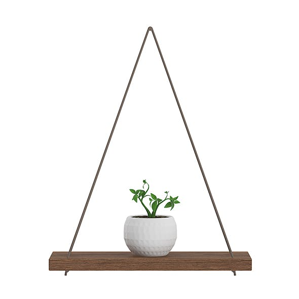 Wall Shelf on the Rope with Small Plant - 3DOcean Item for Sale