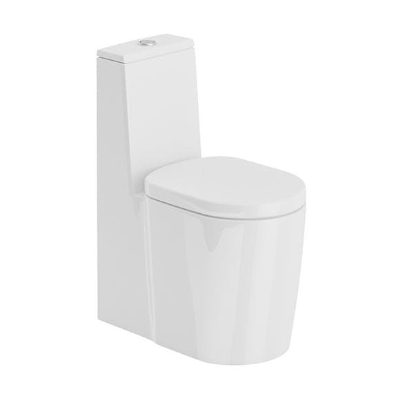 Standing Toilet
