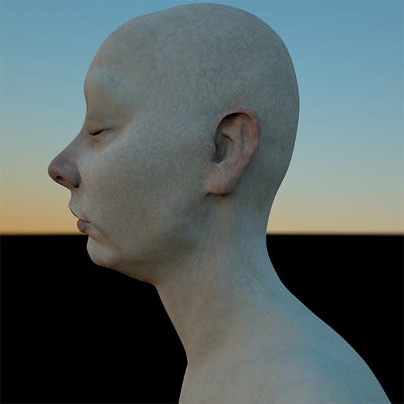 ASIA 3D female head model (OBJ & ZTL) (Mia and her Sisters / ASIA) - 3DOcean Item for Sale