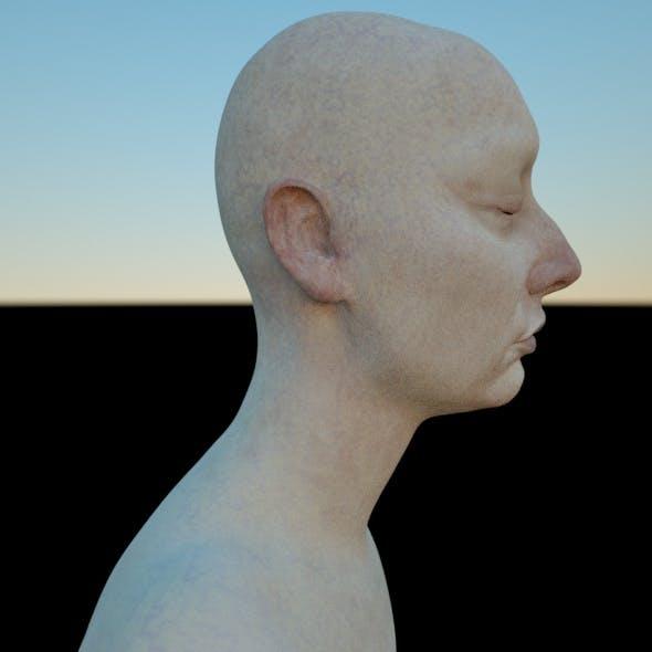 ANDRIA 3D female head model (OBJ & ZTL) (Mia and her Sisters / ANDRIA)