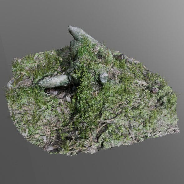 3d scanned tree stump 02 - 3DOcean Item for Sale