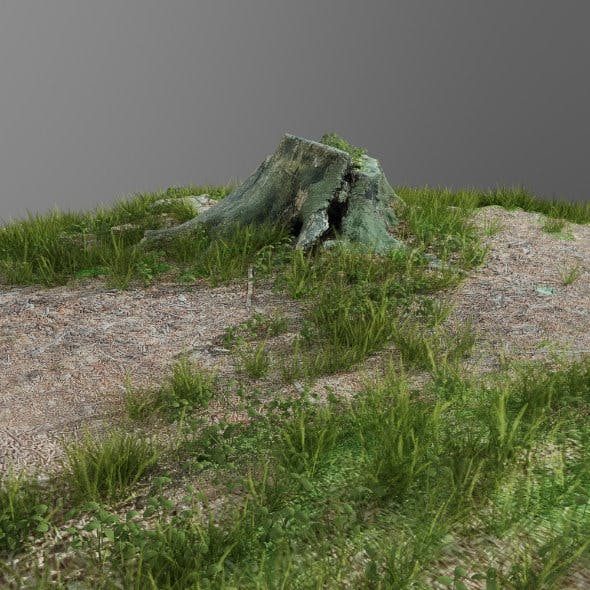 3d scanned tree stump and gras 3
