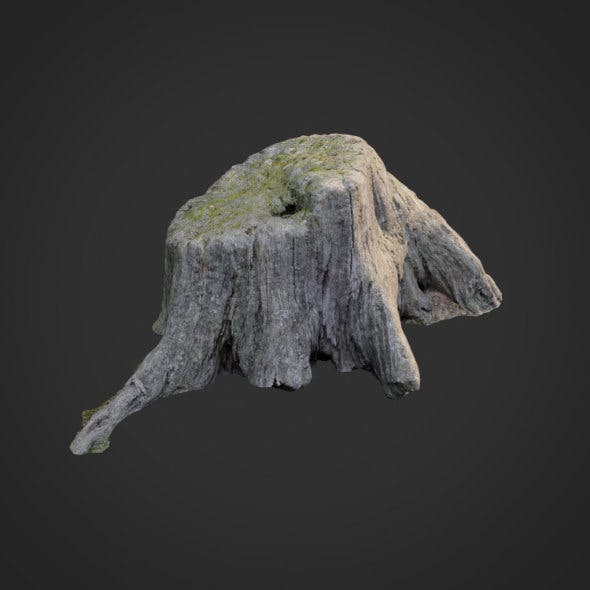 3d scanned nature tree stump 005 - 3DOcean Item for Sale