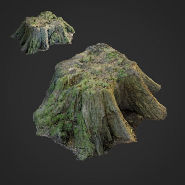 3d scanned nature tree stump 006