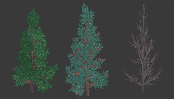 Low Poly, Customizable Pine Tree - 3DOcean Item for Sale