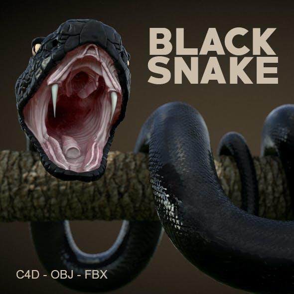 High Detail Snake 3D Model