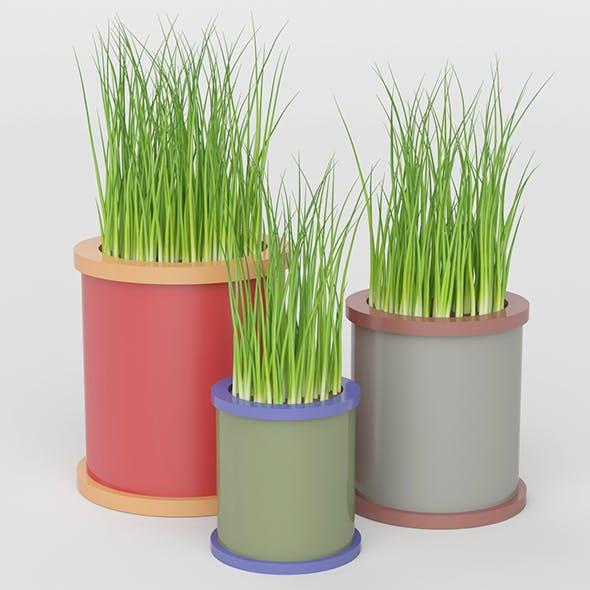 Grass Pot Collection