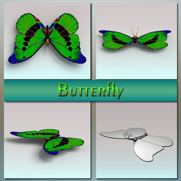Butterfly - 3DOcean Item for Sale