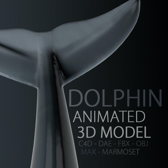 Animated Dolphin