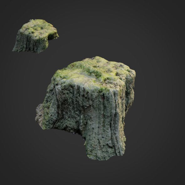 3d scanned nature tree stump 009