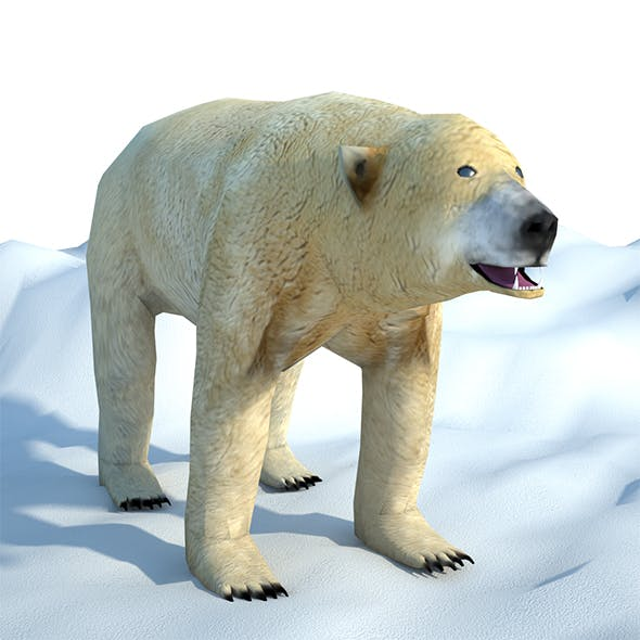 Low Poly Polar Bear - 3DOcean Item for Sale