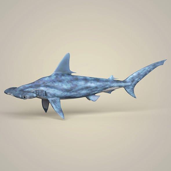 Realistic Hammerhead Shark - 3DOcean Item for Sale