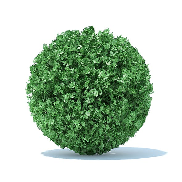 Spherical Hedge - 3DOcean Item for Sale
