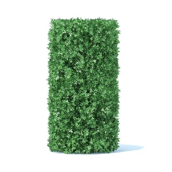 Cylindrical Hedge