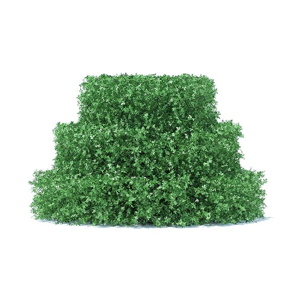 Cake Shaped Hedge - 3DOcean Item for Sale