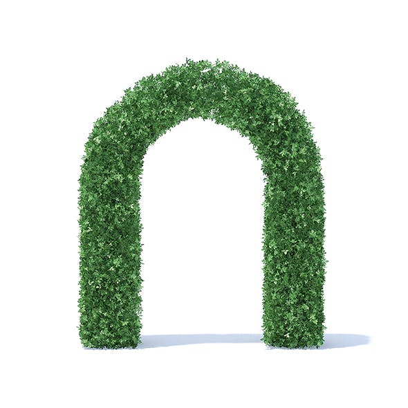 Arc Shaped Hedge