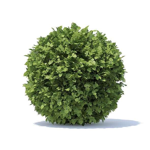 Spherical Hedge