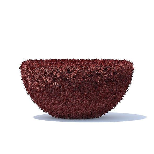 Half-Sphere Red Hedge - 3DOcean Item for Sale