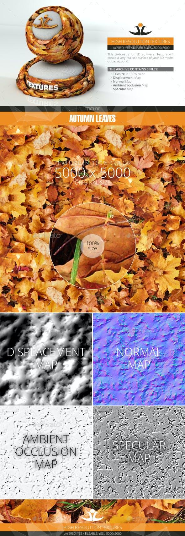 Autumn Leaves 3 - 3DOcean Item for Sale