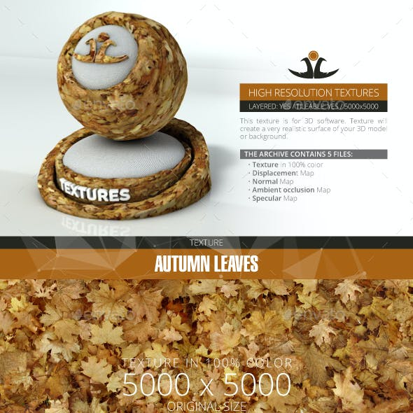 Autumn Leaves 6