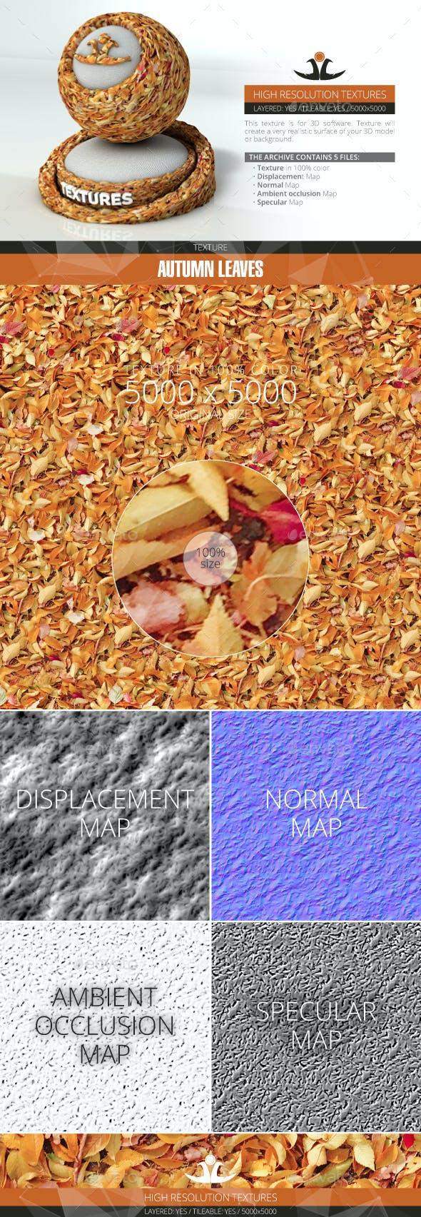 Autumn Leaves 7 - 3DOcean Item for Sale