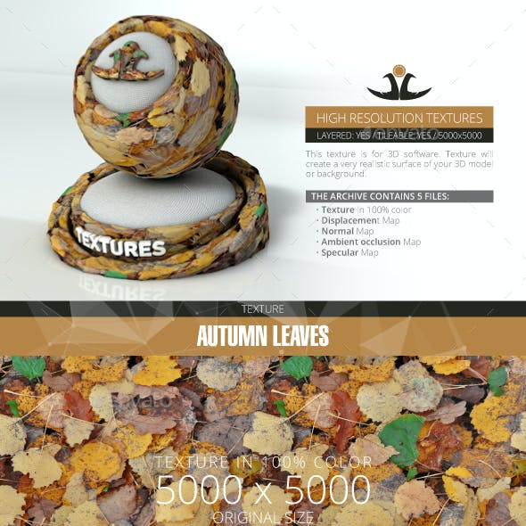 Autumn Leaves 9