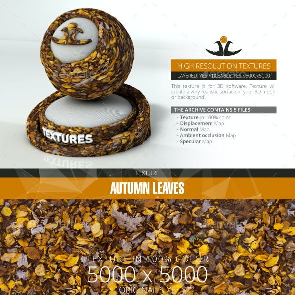 Autumn Leaves 10