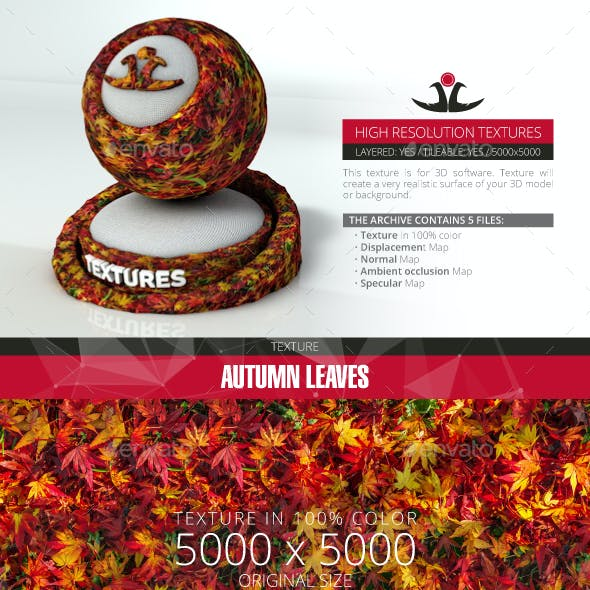 Autumn Leaves 13