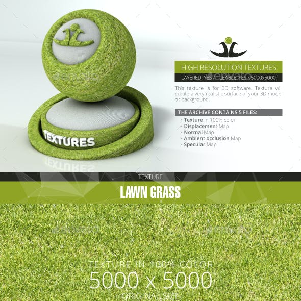 Lawn Grass 9